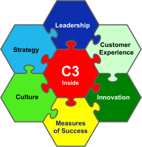 Consulting Customer-Centered Leadership Excellence C3
