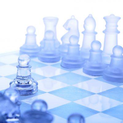 PCU Strategic Plan Excerpt
